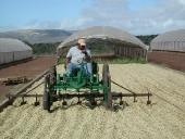 small-tractor-raking